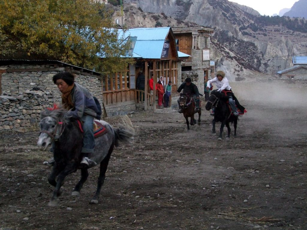 Meanwhile in Manang, we witnessed a bizarre horse race