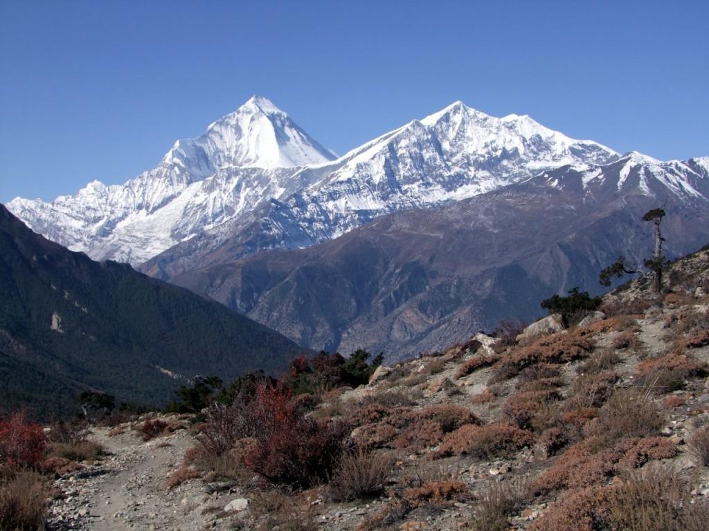 Dhaulagiri and Tukuche Peak from beneath the Mesokanto La