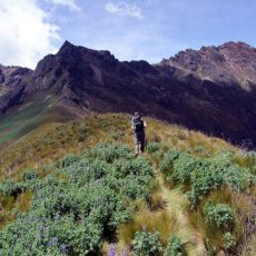 A short scramble up Rumiñahui, the stone-faced Inca warrior