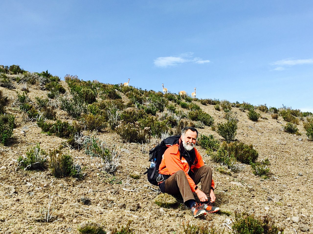 Rodrigo glided across the slopes like the vicuñas on the hillside behind him, and I didn't have a hope of keeping up with him (Photo: Edita Nichols)