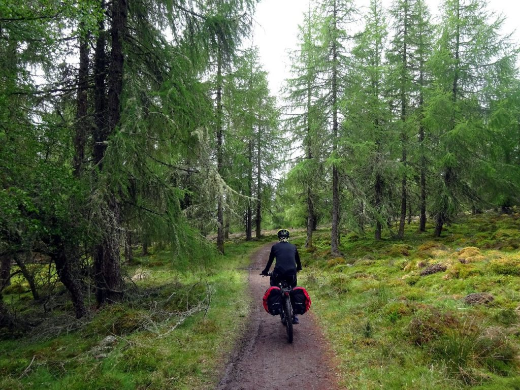 Easy forest trail above Inverness