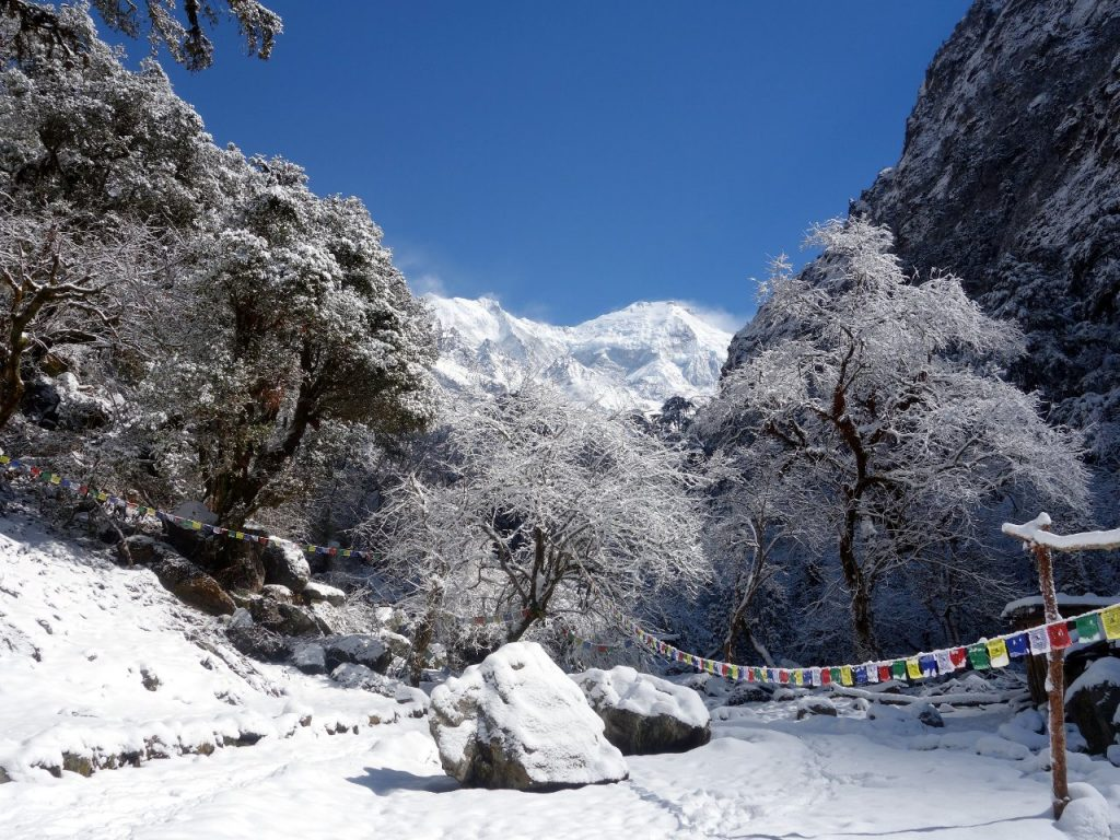 Langtang is a narrow valley running east to west, and hemmed in by high mountains, including 7,227m Langtang Lirung