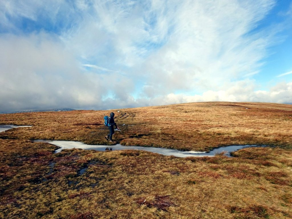On the Waun Rydd plateau
