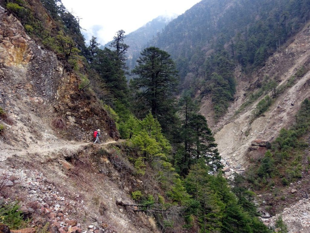 There was a more mountainous feel as the trail climbed relentlessly through a forested gorge