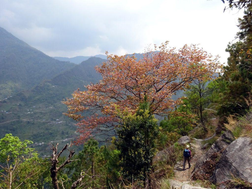 On a high clifftop trail below Khebang