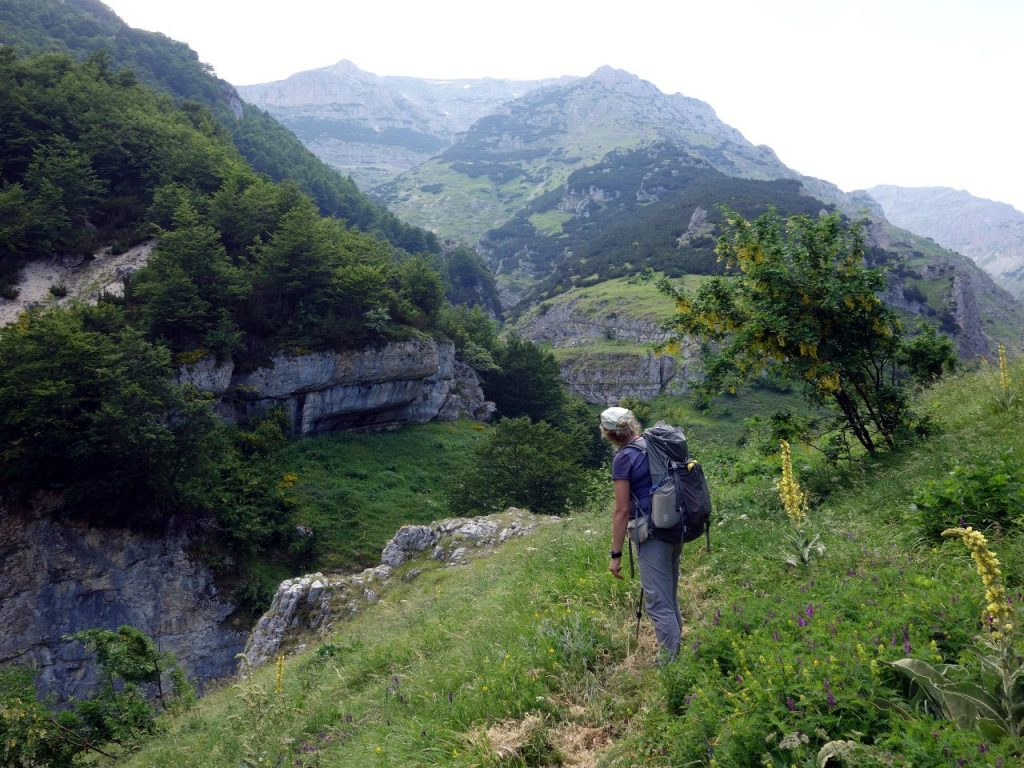 Looking up the ridge of impenetrable pines to Monte Acquaviva's plateau high above
