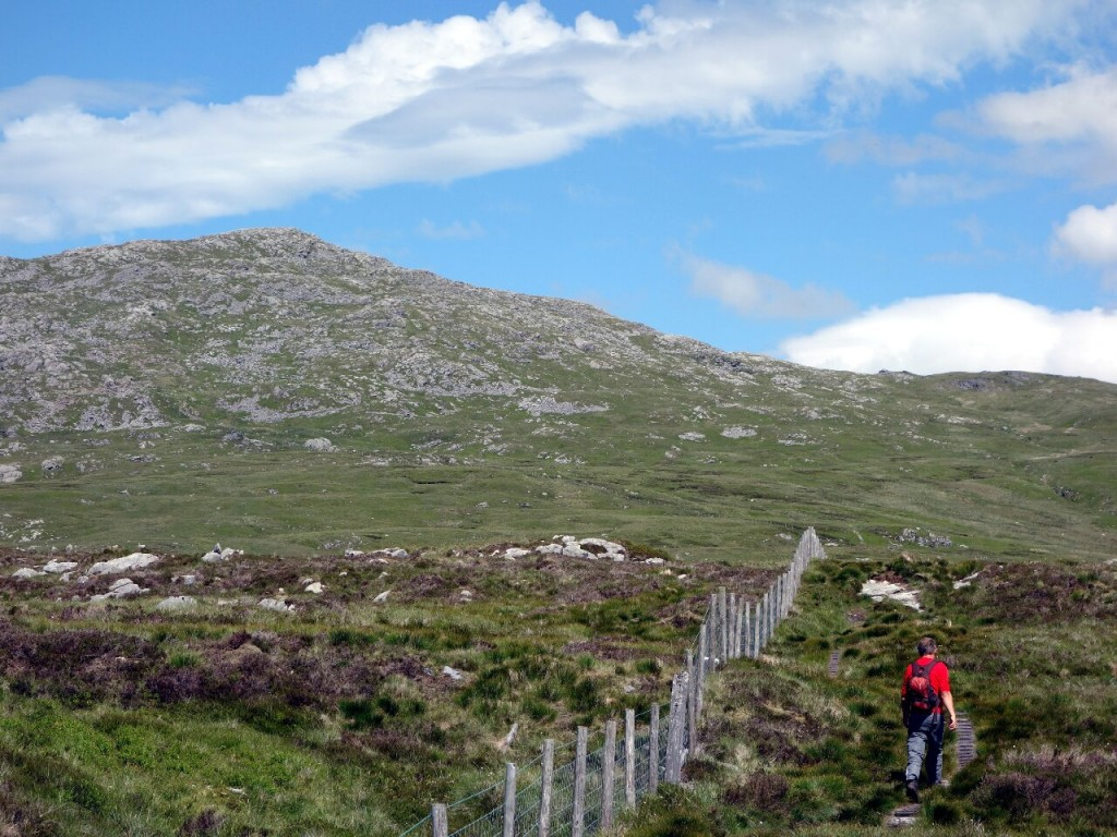 Treading boardwalks on a boggy plateau, with Aran Fawddwy up ahead