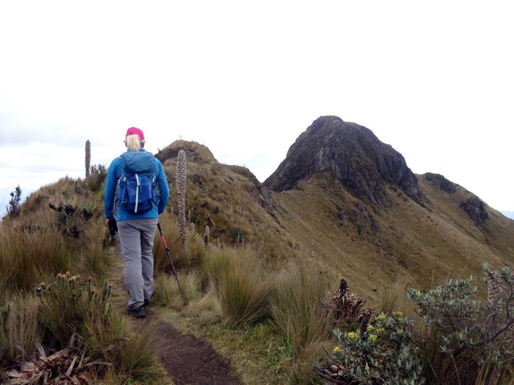 On Fuya Fuya's summit ridge, with the main summit up ahead
