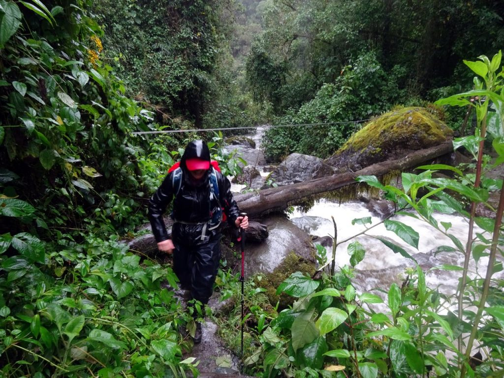 A monsoon trek but without the leeches