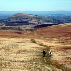 In praise of Cumbria's northern fells