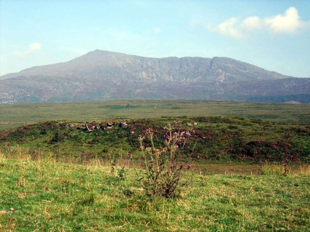 Moel Siabod from above Dolwyddelan