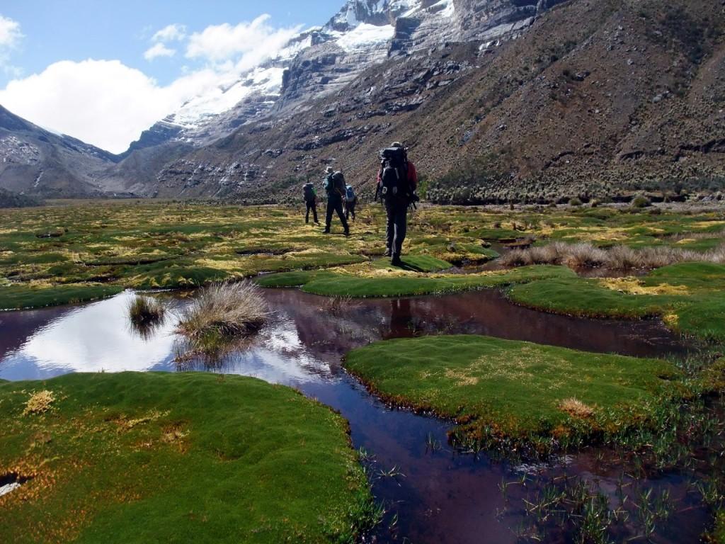 Crossing Valle de los Cojines on islands of cushion plants