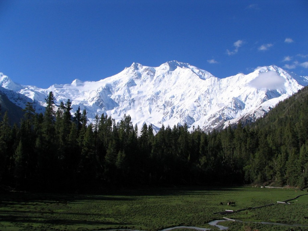 Nanga Parbat from the Fairy Meadow (Photo: Atif Gulzar)