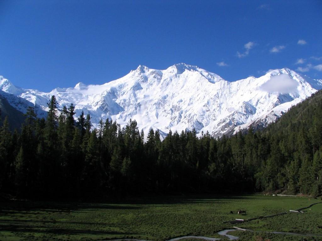 Nanga Parbat from the Fairy Meadow (Photo: Atif Gulzar)