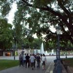 Leafy, sunny Mendoza, Argentina