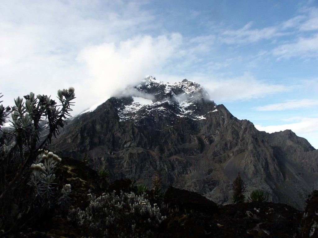 Margherita (5109m) and Albert (5087m), two of the summits of Mt Stanley, from Mt Speke