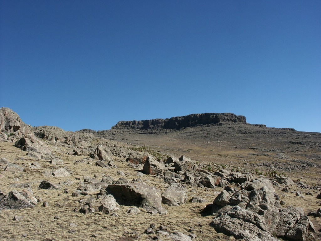 The summit plateau of Ras Dashen from just below