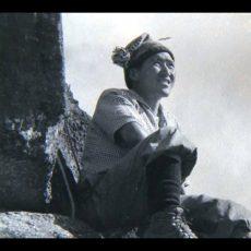 Nawang Gombu: Heart of a Tiger